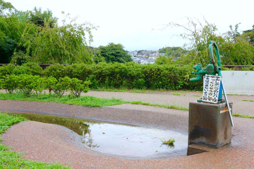 佐鳴湖公園