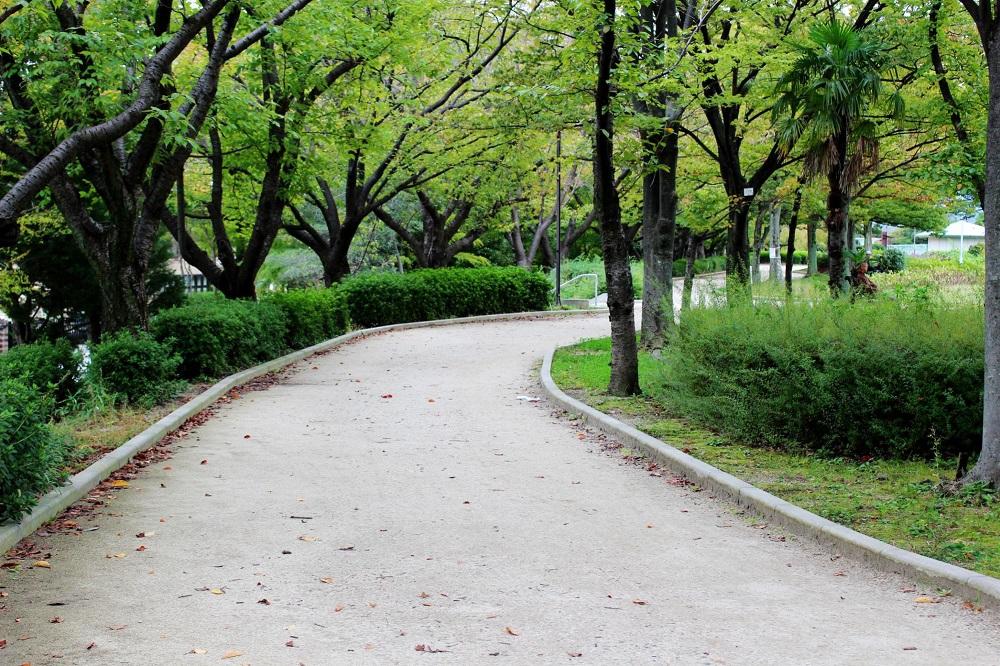 瑞ヶ池公園