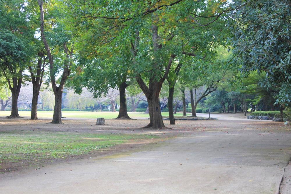 市民の森・見沼グリーンセンター