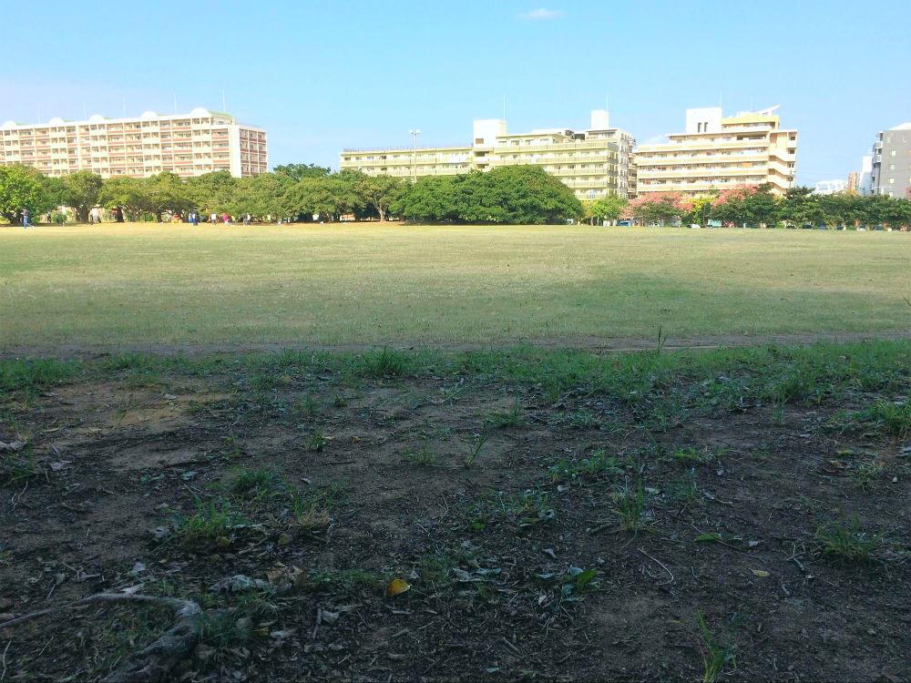 新都心公園