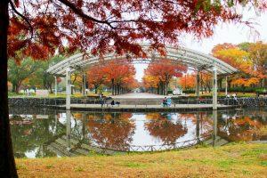 花博記念公園 鶴見緑地