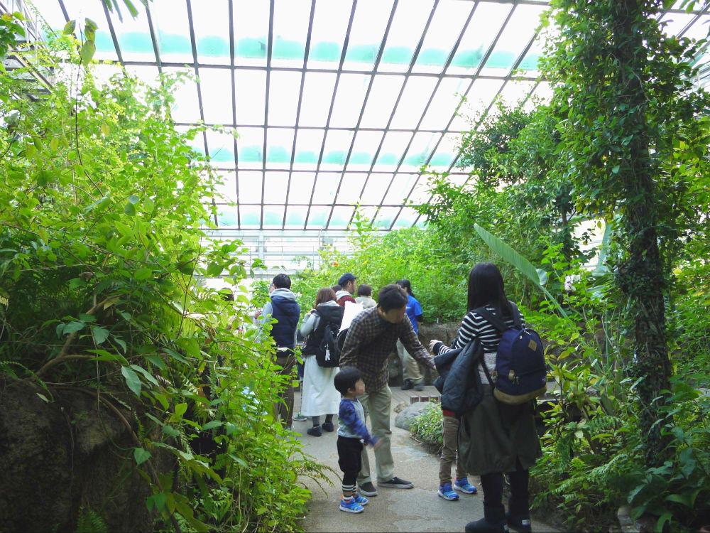 元渕江公園