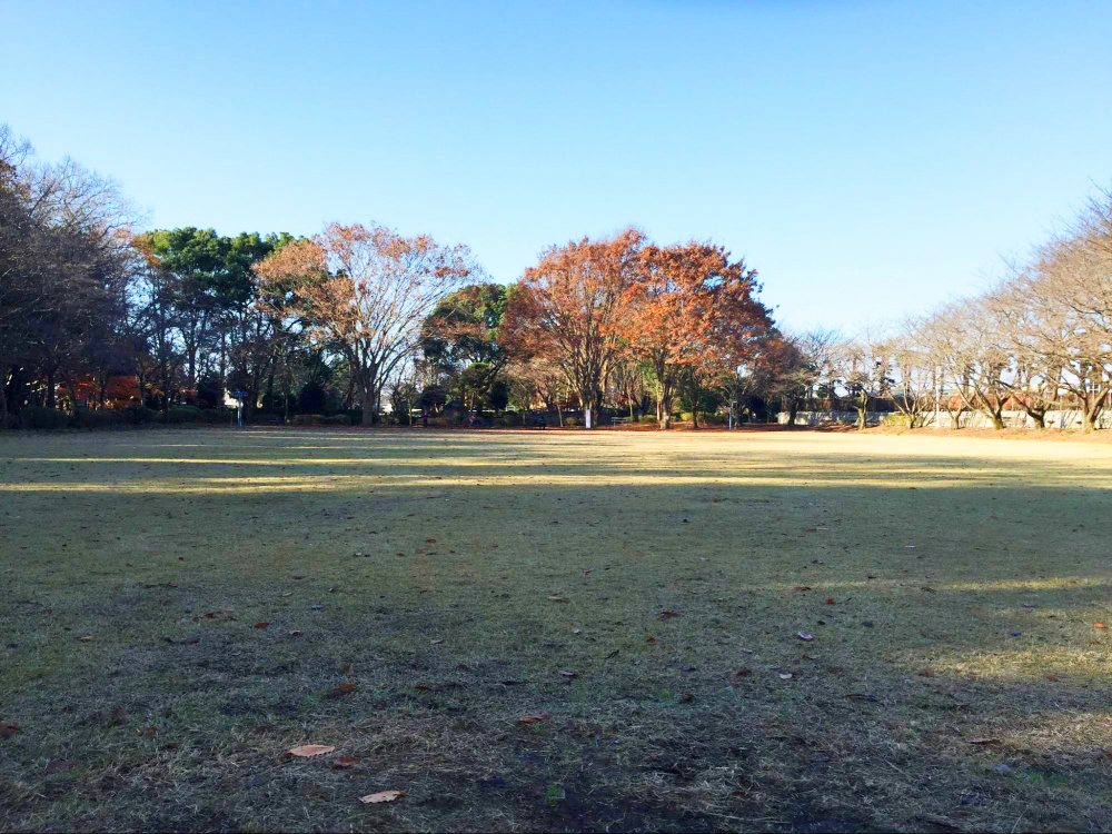 下野市大松山運動公園