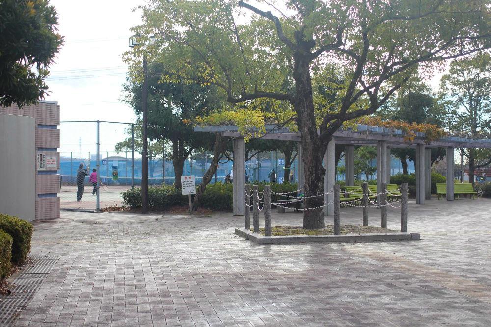 桃花台中央公園