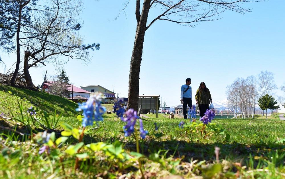 真狩川河川公園