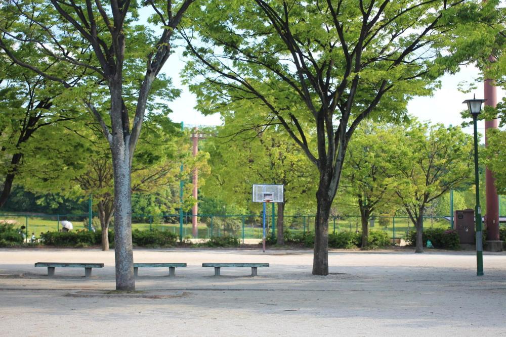 新海池公園
