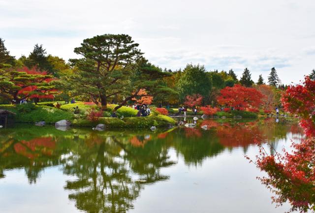 国営昭和記念公園(7)