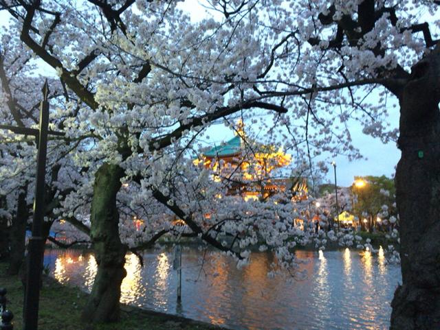 上野恩賜公園 (2)