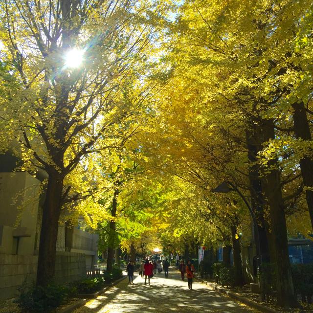 上野恩賜公園(7)