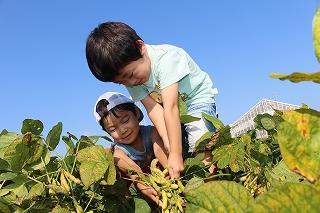 長井海の手公園ソレイユの丘