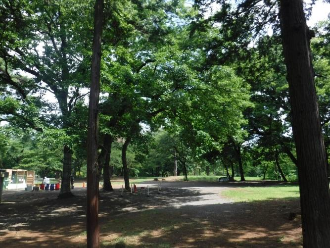 狭山稲荷山公園