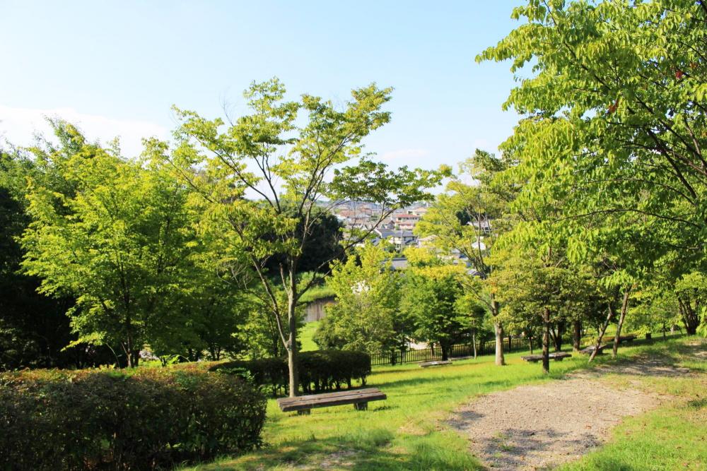 大渕池公園