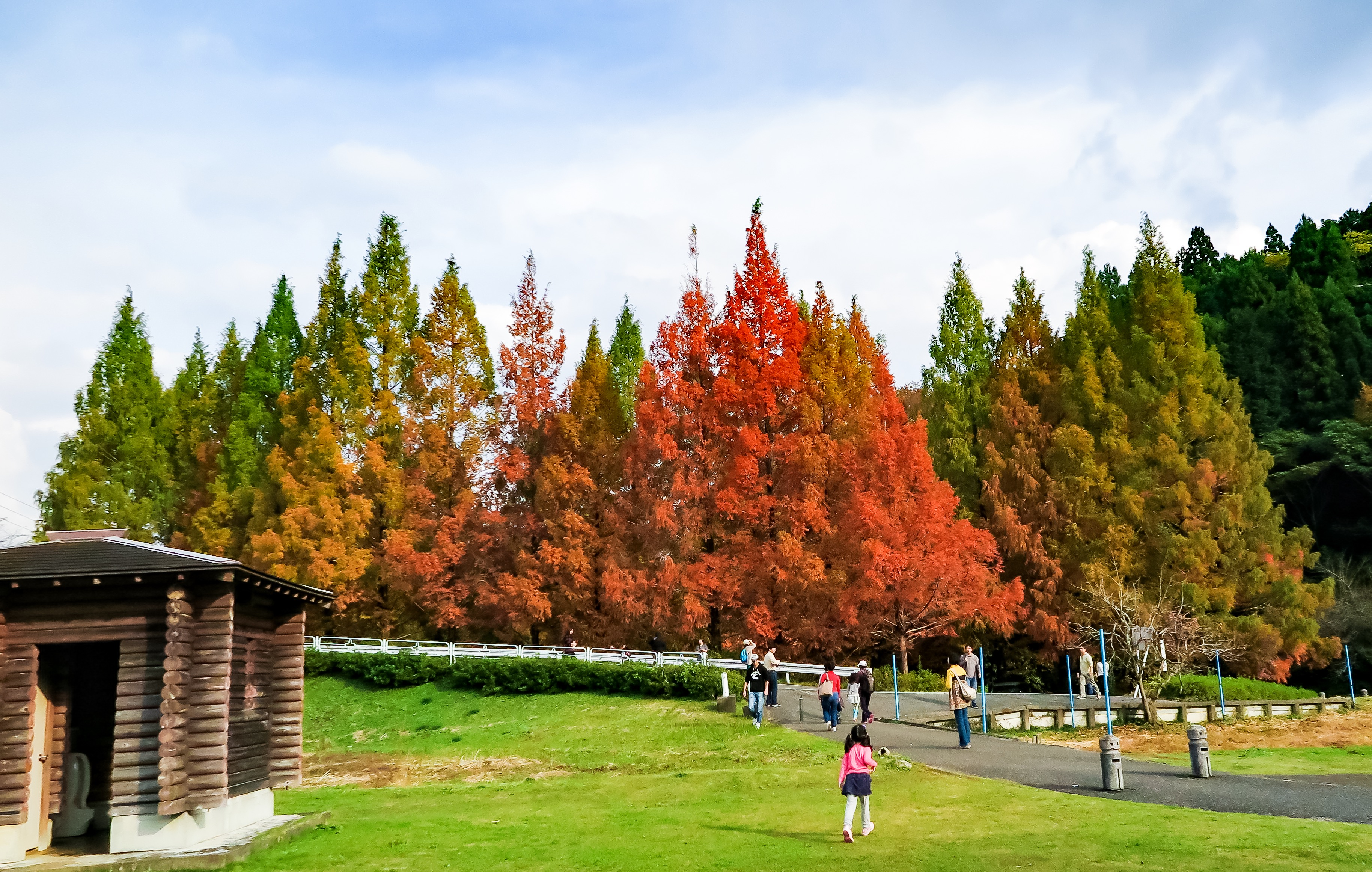 亀山湖畔公園