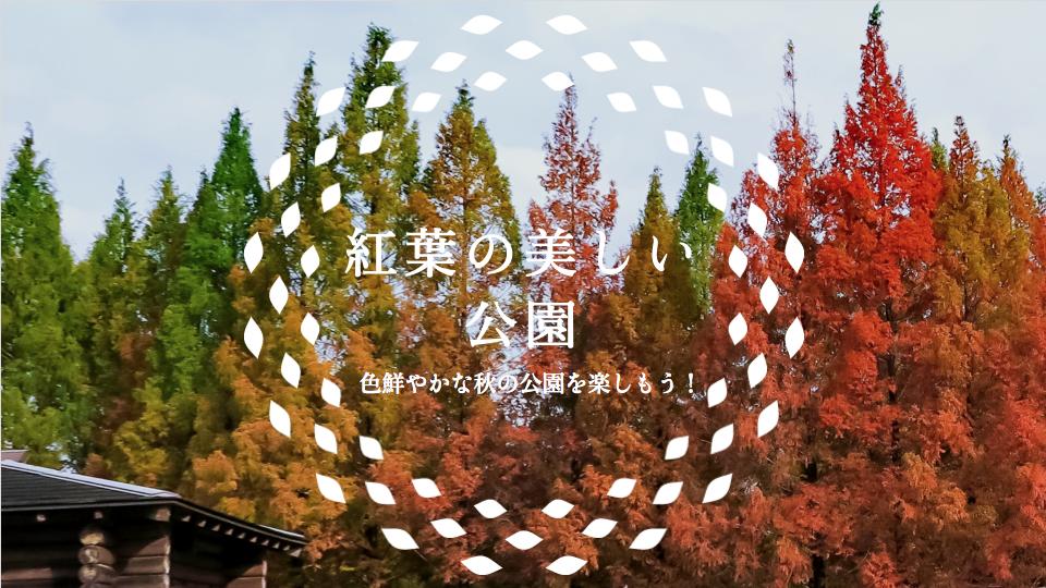 紅葉の美しい公園