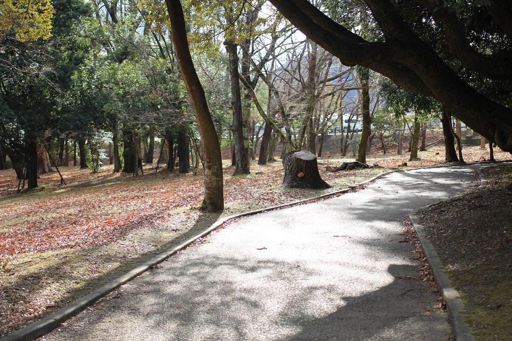 五十鈴公園