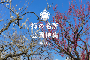 梅の名所公園特集