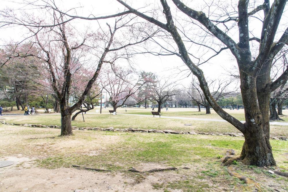 kakamigahara-shimin-park7