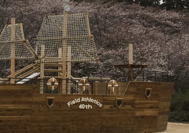 pickup-sakura_清水公園
