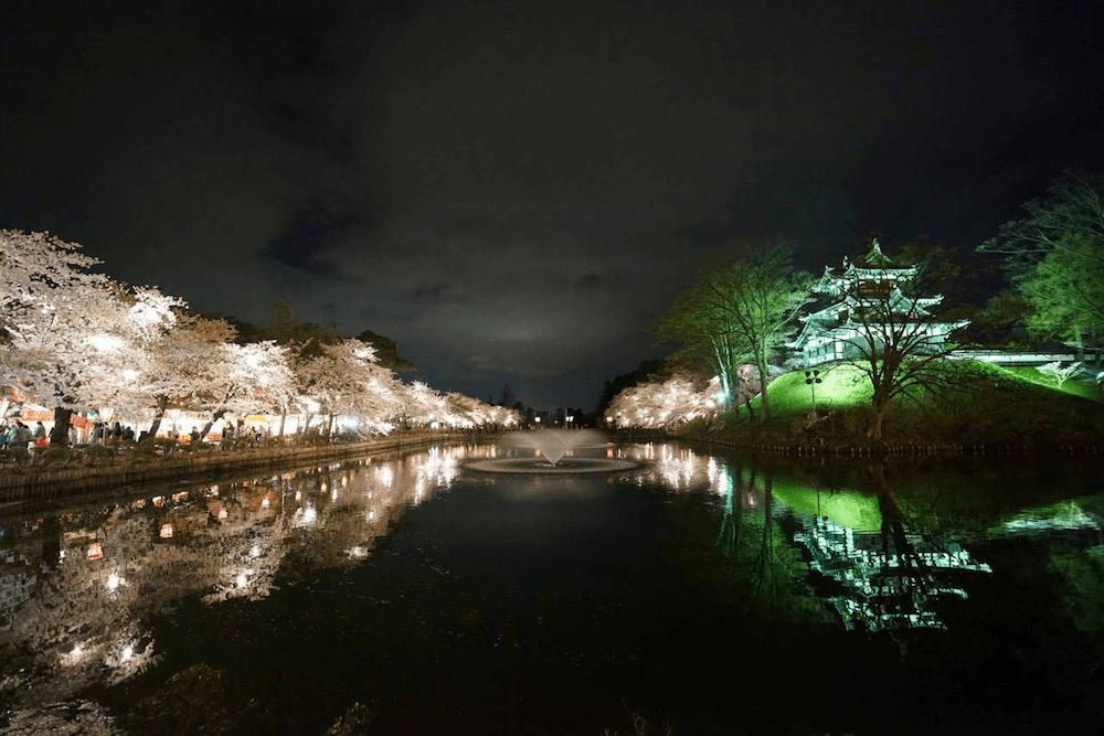 pickup-sakura_高田公園