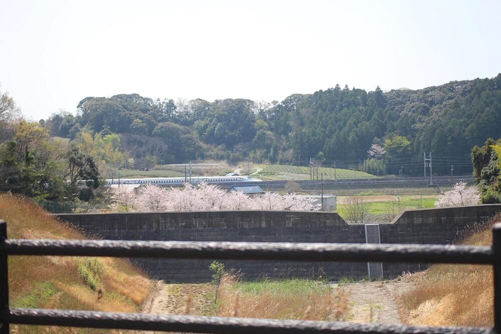 22世紀の丘公園