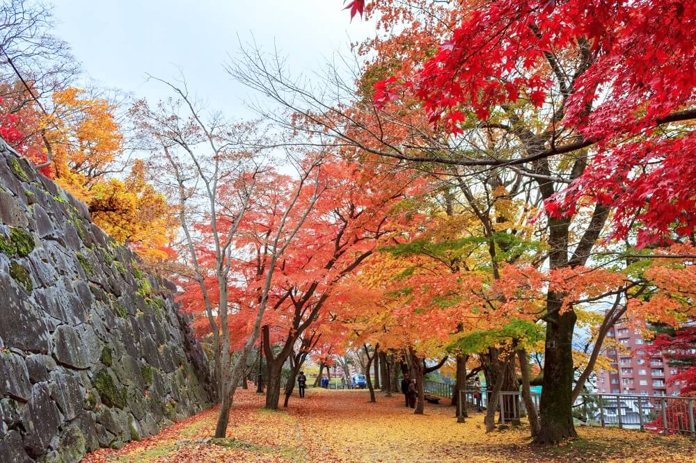盛岡城跡公園/岩手公園