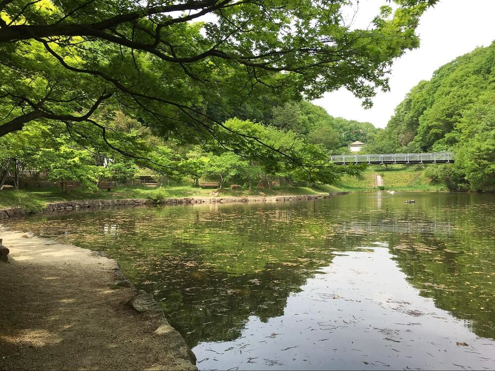 早島ふれあいの森公園