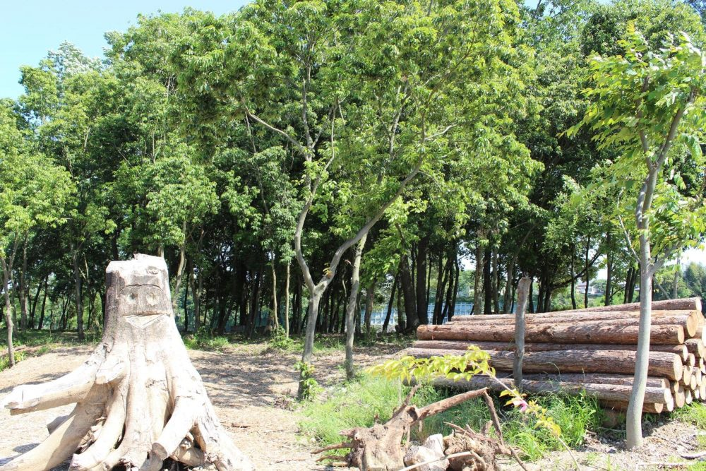 riverport-park-minokamo