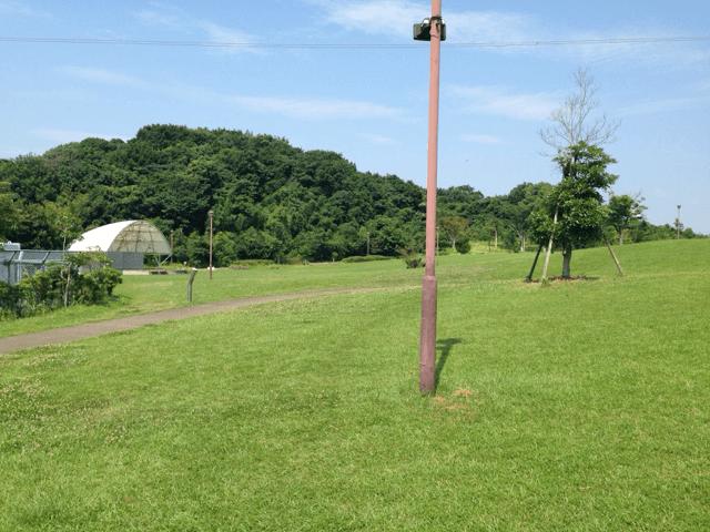 大分スポーツ公園