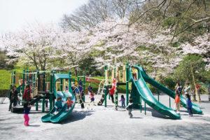 神奈川県藤沢市新林公園