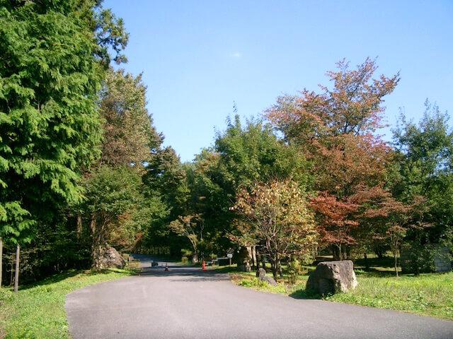 うつのみや平成記念子どもの森公園
