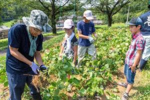 東松山市農林公園