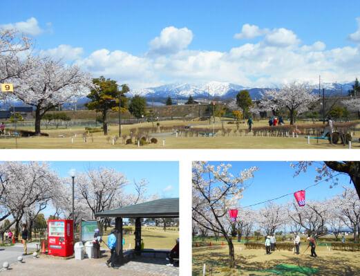 魚津総合公園